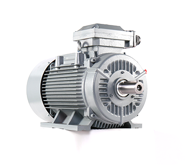 JEM3 JEM4 Series Low Voltage Cast Iron Shell Three-Phase Asynchronous Motor