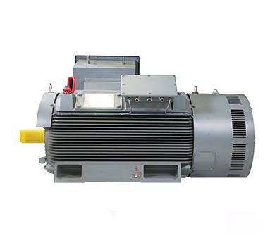 Cast iron frame MV 3 phase asynchronous motor